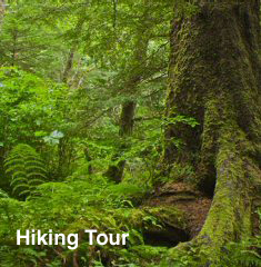 Hiking Tour