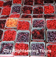 City & Sightseeing Tours