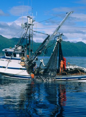 Fishing boat in Kodiak